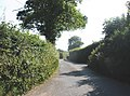 Pinn Lane - geograph.org.uk - 1372159.jpg