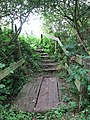 Plank bridge and steps - geograph.org.uk - 1477877.jpg