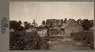 Treatment of slaves in the United States - Plantation slave cabins, South Carolina Low Country