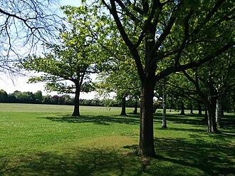 Lyttelton Playing Fields - Playing fields