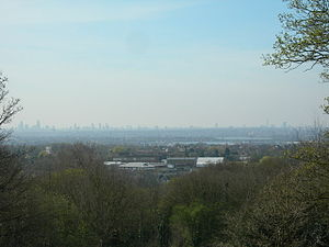 Pole Hill -  View of London