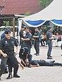 Police 005.jpg