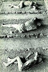 Pompeya. Cadáveres en Porta Nocera.jpg