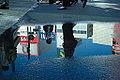 Pond Reflection (8074187380).jpg