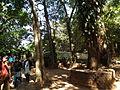 Pookode Lake - Entry area snap 0102.JPG