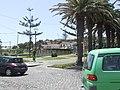 Porto Santo 2011 146 (7263652678).jpg