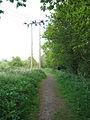 Power line crossing the Weavers Way - geograph.org.uk - 1290677.jpg