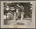 President Roosevelt and Col. Herrick at Glenmere LCCN2013649499.jpg