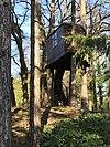 Proper tree house.jpg