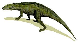 Crocodyliformes