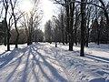 Pulkovo observatory park, winter 2004 - panoramio.jpg