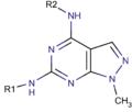 Pyrazolo 3,4-d pyrimidine core.png