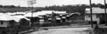 Queensland State Archives 1534 View of estate off Pfingst Road Chermside taken for Queensland Housing Commission September 1950.png