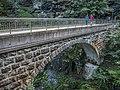 Quellenschlucht Brücke über die Tamina, Bad Pfäfers SG 20190914-jag9889.jpg