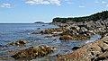 Ragged Cove - Witless Bay, Newfoundland 2019-08-12 (02).jpg