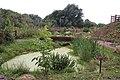 Railworld Wildlife Haven - geograph.org.uk - 917289.jpg