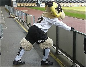 Derby County F.C. - Derby County's mascot, Rammie