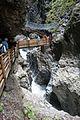 Ravine walkway (24992100595).jpg