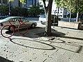 Red Biker - panoramio.jpg