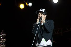 Red Hot Chili Peppers - Rock in Rio Madrid 2012 - 06.jpg