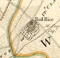 Redrice1791b.tif