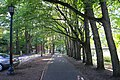 Reed College Parking.jpg