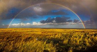 Regenbogen über dem Westergroen von Spiekeroog - Nationalpark Niedersächsisches Wattenmeer.jpg
