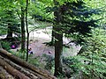Rehackerbrunnen 430 m ü. NN - panoramio.jpg