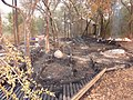 Rhino Plains Fire - panoramio.jpg