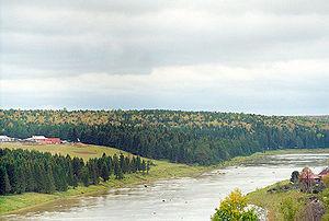 Tura River - The Tura near Verkhoturye
