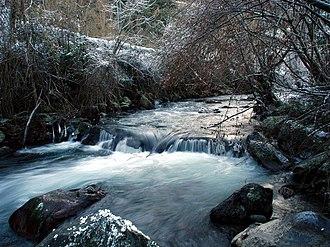 Deva (river) - Deva River in Camaleño
