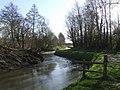 River Brit - geograph.org.uk - 709376.jpg