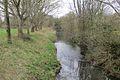 River Brue (geograph 4452929).jpg