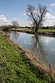 River Cam, downstream of Baits Bite Lock - geograph.org.uk - 1193993.jpg