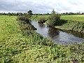 River Maine near Currans - geograph.org.uk - 581612.jpg