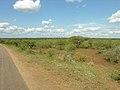 Road view (393904977).jpg