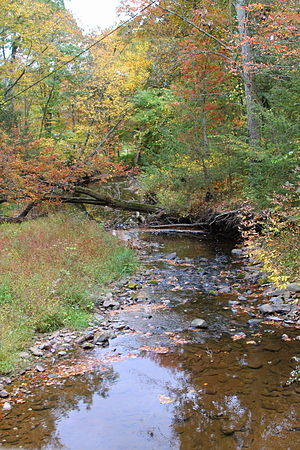 Roaring Creek (Pennsylvania) - Roaring Creek in its upper reaches