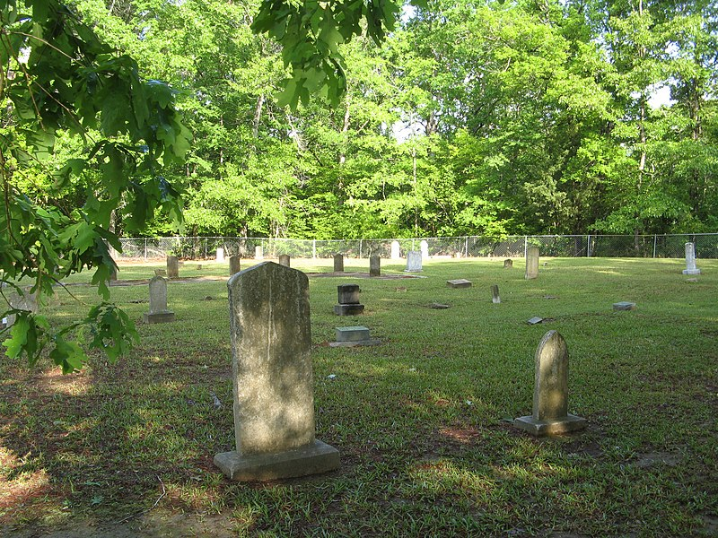 File:Rocky Creek Cemetery (2461792223).jpg