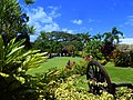 Romney manor - Botanical Garden - panoramio.jpg