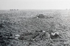 Battle of Rooiwal - Commandant Potgieter sprawled in the grass 27 metres from the British line, after the battle of Rooiwal on 11 April 1902. He and 50 of his men died  charging the British line on horseback.