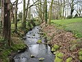 Rural Stream - geograph.org.uk - 129084.jpg