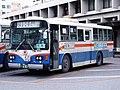 Ryukyu-Bus-UD.JPG