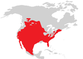 SCAPHIOPODIDAE range edited red.png