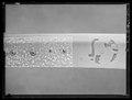 Sabel, kilij med äldre klinga av Hassan al-Misri - Livrustkammaren - 79712.tif