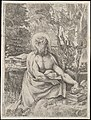 Saint Jerome in the Wilderness MET DP104254.jpg