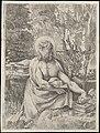 Saint Jerome in the Wilderness MET DP104254.jpg