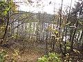 Saldus, Saldus pilsēta, Latvia - panoramio (12).jpg