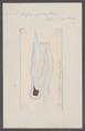 Salpa aspera - - Print - Iconographia Zoologica - Special Collections University of Amsterdam - UBAINV0274 092 08 0004.tif