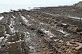 Sandstone Strata - geograph.org.uk - 938269.jpg