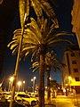 Santa Cruz de Tenerife, Spain - panoramio (110).jpg
